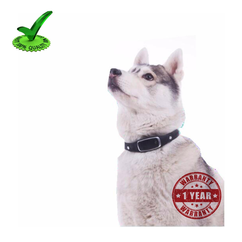 Gps Pet Tracker Collar Belt
